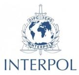 interpol2-289x275